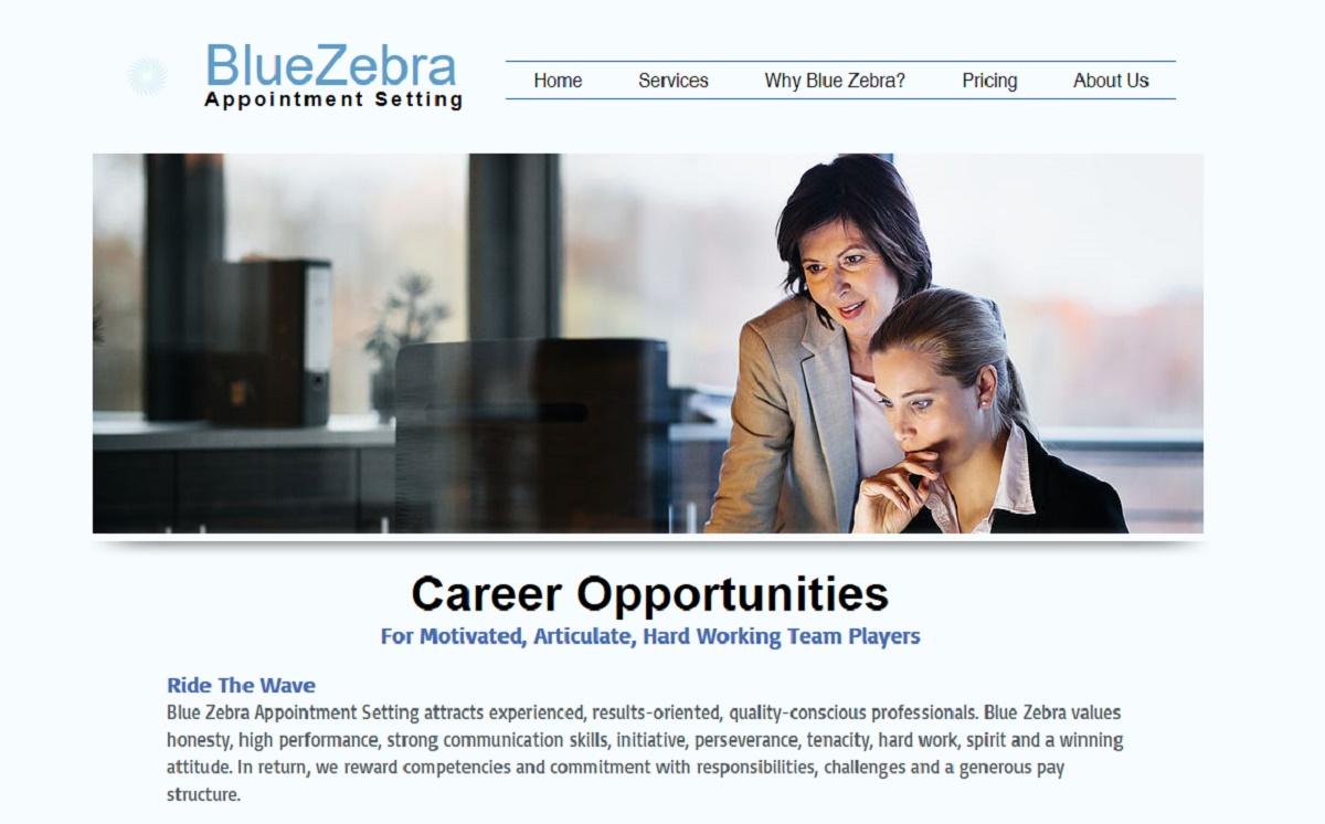 Blue Zebra Review Legit Or Scam 9 To 5 Work Online