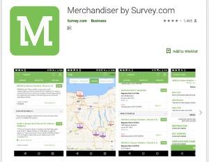 Survey Merchants