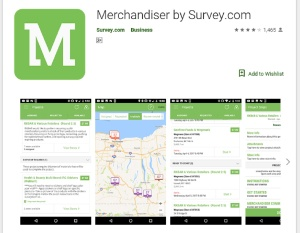 Survey Merchants
