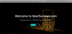 beersurveys